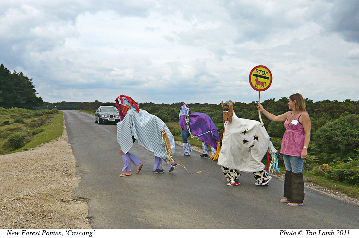 Pantomime Ponies in the New Forest
